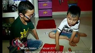 Meski Sibuk, Artis Daus Mini Tetap Luangkan Waktu Bermain Bersama Anak - Obsesi 18/02