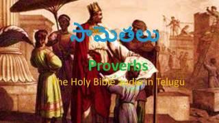 Proverbs (సామెతలు)_ The Holy Bible audio in telugu.wmv