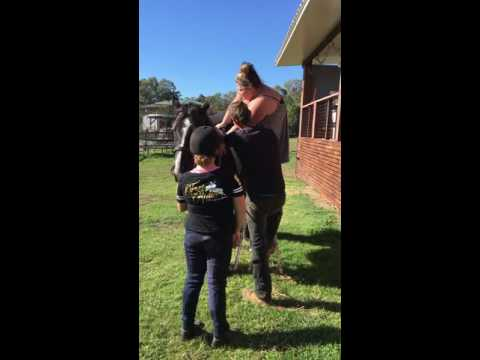 Xxx Mp4 Funny Woman Riding Horse 3gp Sex