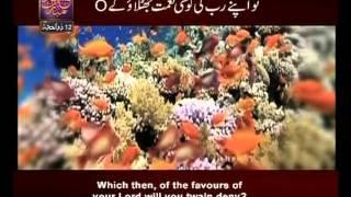 Surah Ar Rehman n° 55 Urdu & English Translate By Qtv