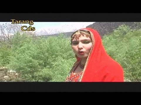 Pashto Regional Song With Dance 09 - Best Of Gul Rukh Gul - Gul Rukh Gul Top Hit Pushto Song