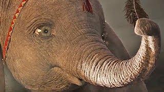 Dumbo   official trailer #2 (2019)