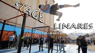 Stage Linares 2016 | Street Workout