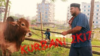 Kurbani 2k17.The Ultimate kurbani