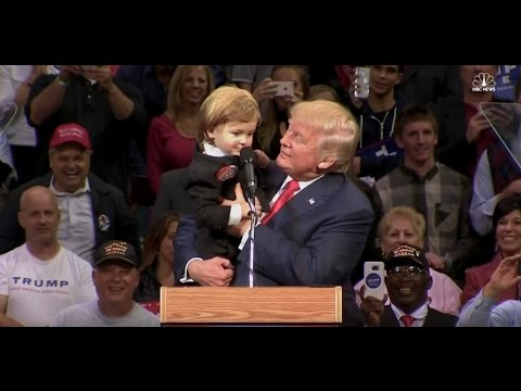 Xxx Mp4 This Video Will Get Donald Trump Elected 3gp Sex