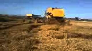 TC 5090 a maior maquina arrozeira do brasil