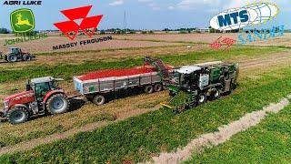 MTS Sandei THV 700 | Tomatoes Harvest | Raccolta Pomodori | Massey Ferguson | John Deere