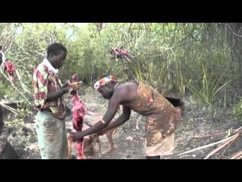 Hadzabe la última tribu cazadora y recolectora de África 1