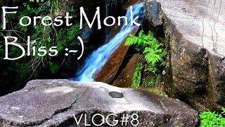 VLOG#8: Forest Monk Bliss!   :-)   _/\_