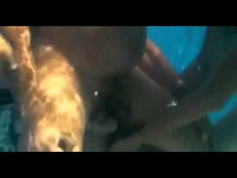 Nacimiento bajo el agua de bebe con delfin