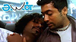 Ayan   Ayan Full Tamil Movie scenes   Jagan tries to Smuggle Drugs   Surya rescues Jagan  Surya film