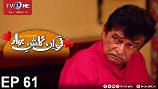 Love In Gulshan e Bihar   Episode 61   TV One Drama   17th October 2017
