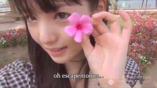 Michishige Sayumi Hide