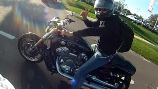 2015 V-ROD Muscle in Tampa