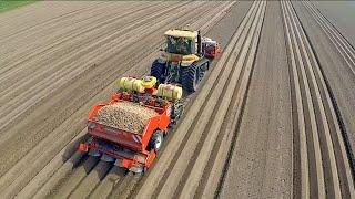 Potato Planting    Challenger MT 765D + Dewulf Miedema planter   Veerman Goudswaard