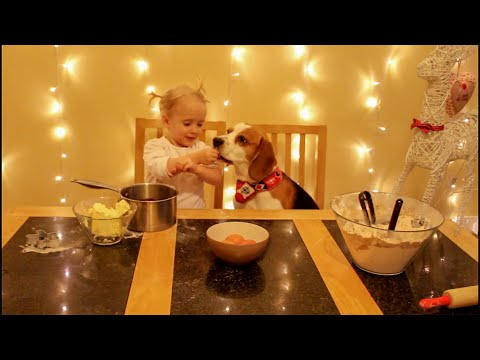 Cute girl and her dog make gingerbread ( Charlie the dog)
