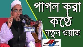 হযরত মাওলানা আবু ইউসুফ হবিগঞ্জী সাহেব | Bangla New Waz 2018 | Mawlana Abu Yusuf