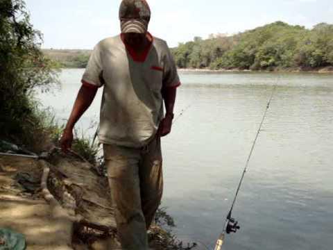 pescaria de curimba no rio são francisco com barro