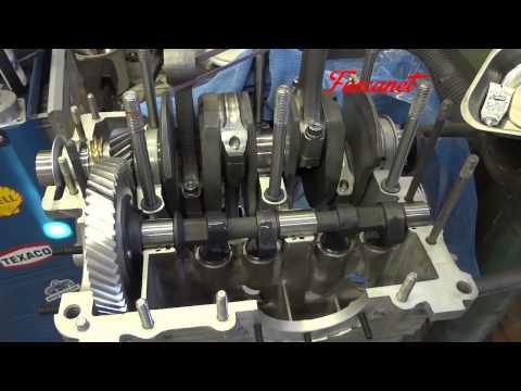 Tonella Motor Fuscanet 05