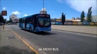 Buses Rosarinos - Movi Bus y los flamantes VW/Metalpar