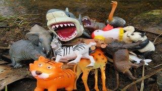 Learning Zoo Animal Names 🐅Wild Animal Sounds for Children 🐘 Safari Animal Toys