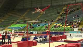 Sam Mikulak - High Bar Final - 2018 Pacific Rim Championships