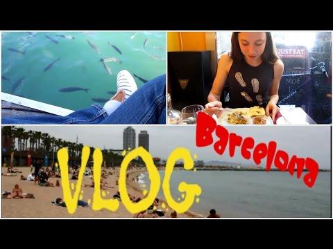 VLOG #10: Un paseo por Barcelona, supermercado, comida india