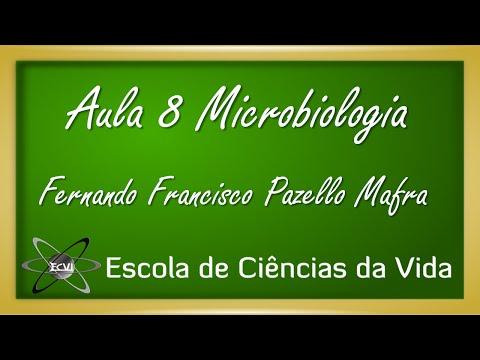 Microbiologia: Aula 8 - Microscopia confocal