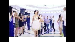 رقصة البطريق العروس والعريس في حفل زواجهم