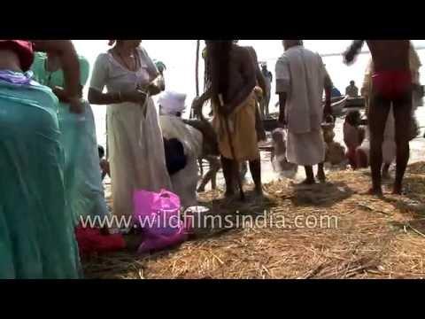 Hindu pilgrims and sadhus assemble for Kumbh Mela in Allahabad