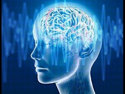 Xxx Mp4 Alpha Waves Improve Your Memory Super Intelligence 3gp Sex
