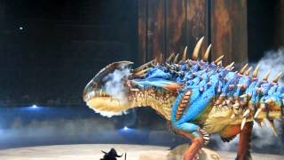 How to train your Dragon Live show. Fight scene. With Canon 7D HD