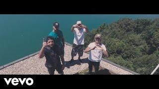 $-Crew - Félins