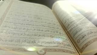 تلاوت قرآن- جزء 8- قاری:آقایی - تحدیر سریع