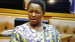 Funny S.A parliament - arguing about frog's...