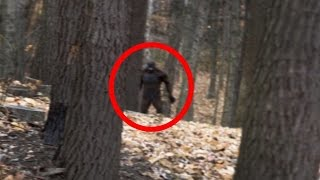 4 Terrifying BIGFOOT Encounters Caught on Camera