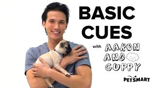 PetSmart Puppy Training: Basic Cues