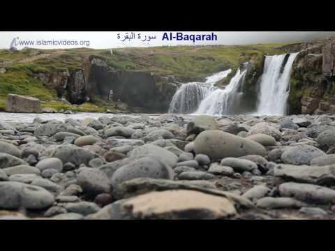 Xxx Mp4 Surah Baqarah 1 Of The World 39 S Best Quran Recitation In 50 Languages 3gp Sex