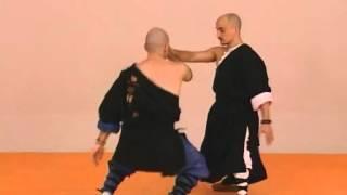 Tai chi chuan Combat