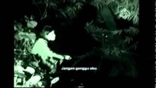 Entiti Indonesia