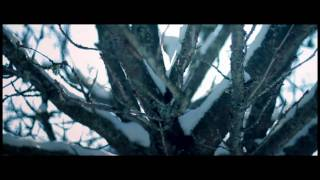 BLUE SCHOLARS: Coffee and Snow 2