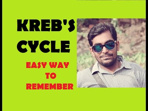 HOW TO LEARN KREB'S CYCLE / EASY AND SIMPLE WAY TO LEARN KREB'S CYCLE