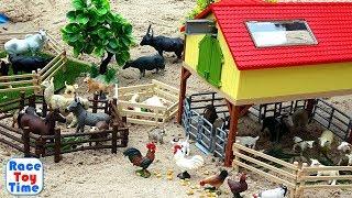 Fun Farm Animals Toys For Kids - Let