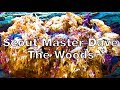 Download Video Download Scout Master Dave: The Woods 3GP MP4 FLV
