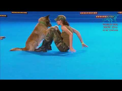FCI Dog dance World Championship 2016 – Freestyle final  - Lusy Imbergerova and Deril (Italy)