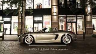 REINWERK Porsche 981 BoxsterS PV