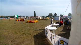 CasidiTeam FCI GIRL ON FIRE- Mimi zawody Sopot