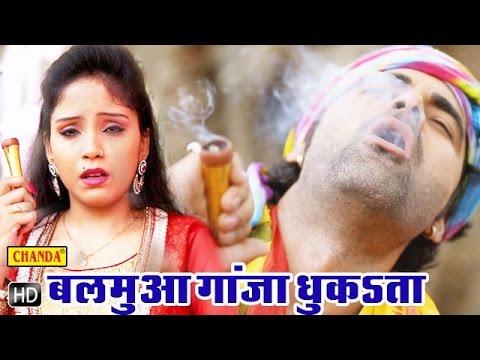 Xxx Mp4 Balamua Ganja Dhuka Ta बलमुआ गांजा धुंका ता Bhojpuri Shiv Bhole Baba Bhajan Songs 3gp Sex