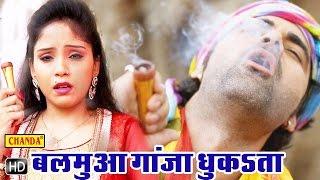 Balamua Ganja Dhuka Ta || बलमुआ गांजा धुंका ता || Bhojpuri Shiv Bhole Baba Bhajan Songs