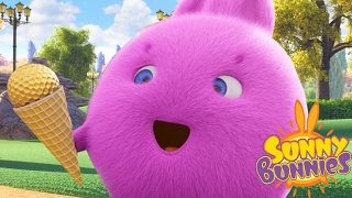Sunny Bunnies | GELO DE GELO | Desenhos animados engraçados para crianças | WildBrain em Português